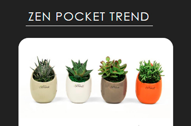 Tropical Live Trends Zen Pocket