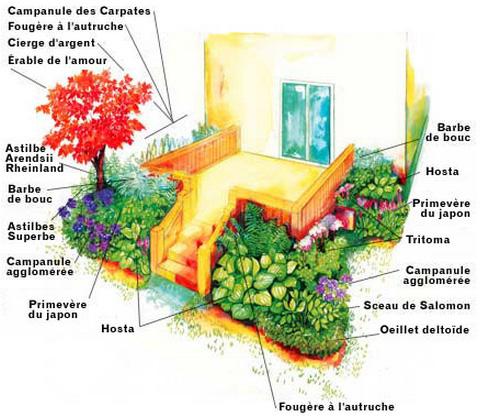 Cacher le dessous d\'un patio exposé à la mi-ombre | Botanix