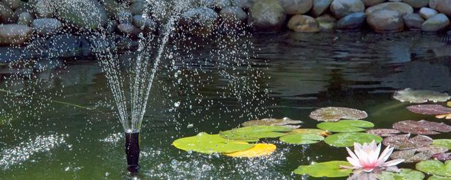 pompe pour bassin poisson exterieur simple bassin exterieur quels poissons with pompe pour. Black Bedroom Furniture Sets. Home Design Ideas