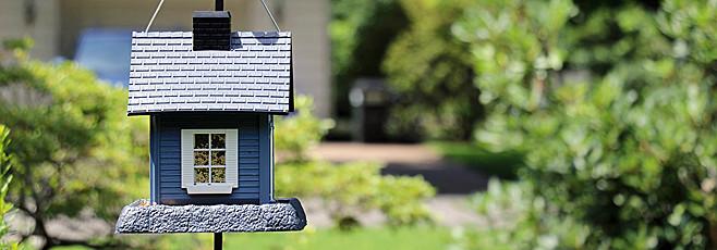 ornithologie attirer les oiseaux dans le jardin. Black Bedroom Furniture Sets. Home Design Ideas